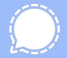 Musk Hails Signal Over WhatsApp's Lousy Data Privacy, Microsoft Flaunts Skype